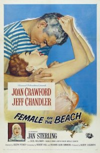 Female on the Beach poster