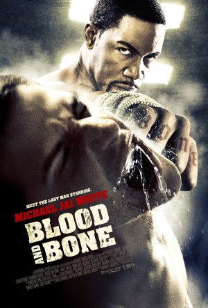Blood and Bone Dvd cover