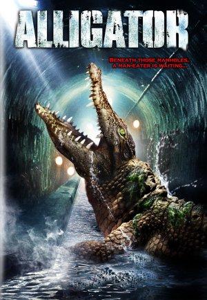 Alligator 1532x2217