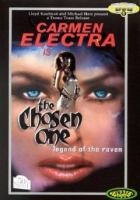 The Chosen One: Legend of the Raven poster