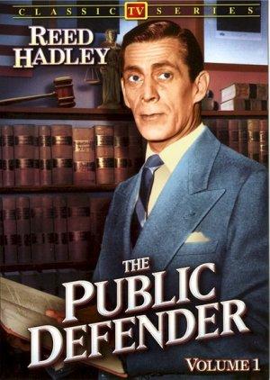 Public Defender 412x580