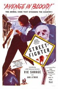 Street-Fighter poster