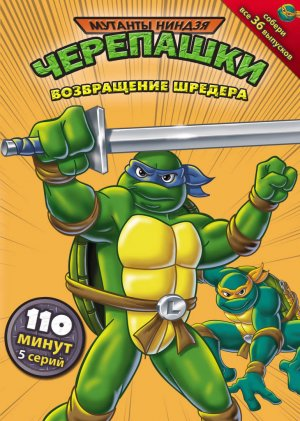 Teenage Mutant Ninja Turtles 770x1080