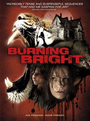 Burning Bright 1650x2220