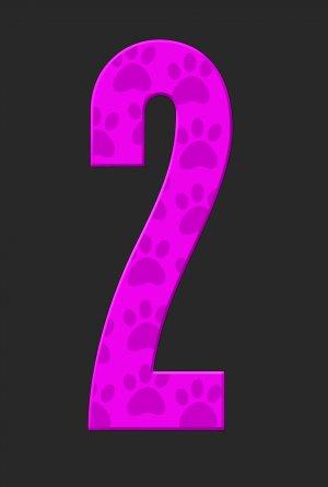 La pantera rosa 2 2422x3600
