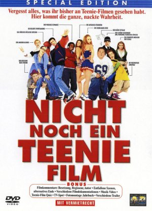 Not Another Teen Movie 650x900