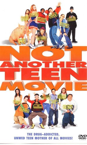 Not Another Teen Movie 600x1000