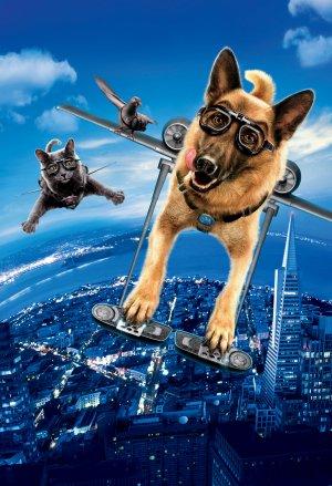 Cats & Dogs - Die Rache der Kitty Kahlohr 3416x5000
