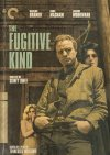 The Fugitive Kind Cover