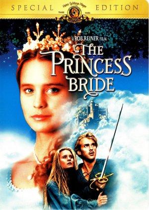 Bortrövad prinsessa 1523x2141
