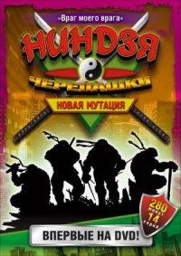 Saban's Ninja Turtles: The Next Mutation poster