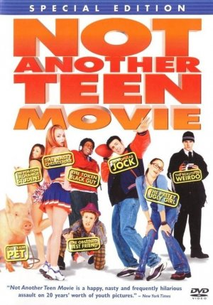 Not Another Teen Movie 699x1000