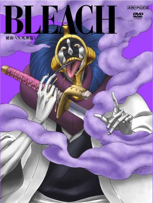 Bleach 1135x1504