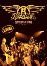 Aerosmith: You Gotta Move poster