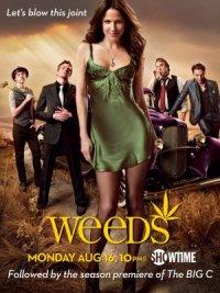 Weeds - Kleine Deals unter Nachbarn poster