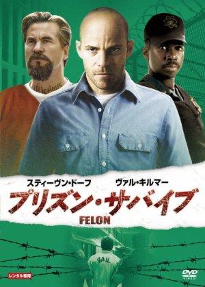Felon 458x640