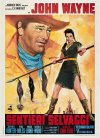The Searchers Poster