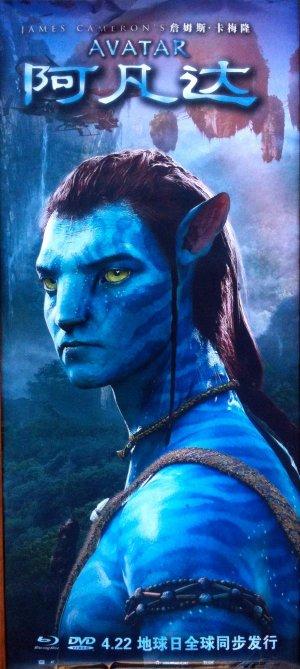 Avatar 887x1979