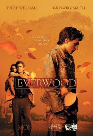 Everwood 407x595