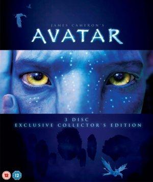 Avatar 504x600
