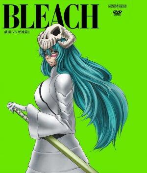 Bleach 1292x1521