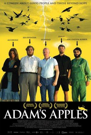 Ádám almái 509x755