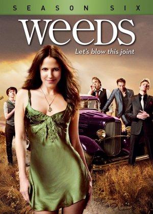 Weeds 1612x2255