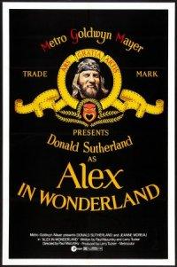 Alex in Wonderland poster