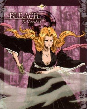 Bleach 1425x1780