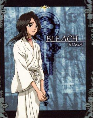 Bleach 1409x1780
