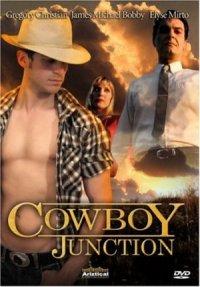 Cowboy Junction poster