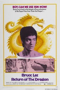 Revenge of the Dragon poster