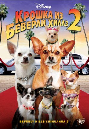 Beverly Hills Chihuahua 2 771x1111