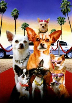 Beverly Hills Chihuahua 2 1536x2175