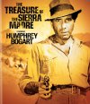 The Treasure of the Sierra Madre Cover