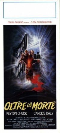 Zombie 4: After Death poster
