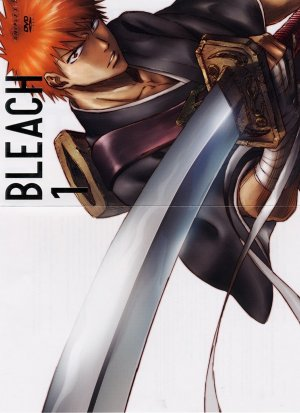 Bleach 1200x1650