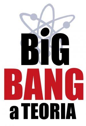 The Big Bang Theory 756x1104