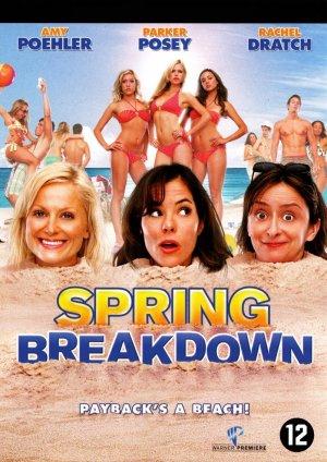Spring Breakdown 801x1132