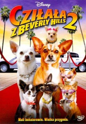 Beverly Hills Chihuahua 2 570x820