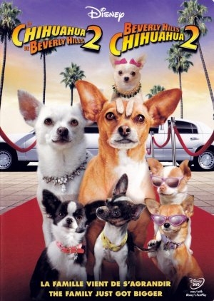 Beverly Hills Chihuahua 2 1528x2148