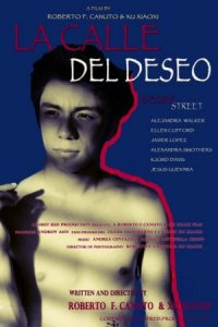 Desire Street poster