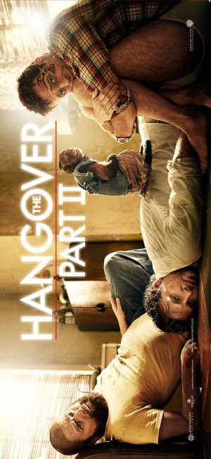 The Hangover Part II 657x1424