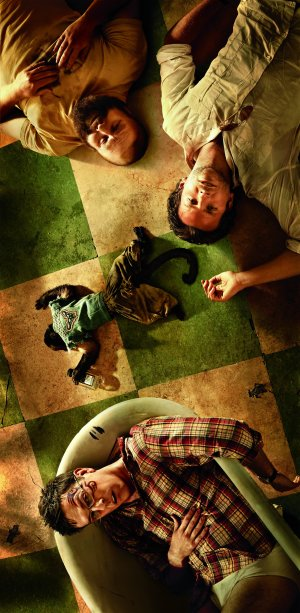 The Hangover Part II 2445x5000