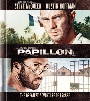 Papillon 1616x1809