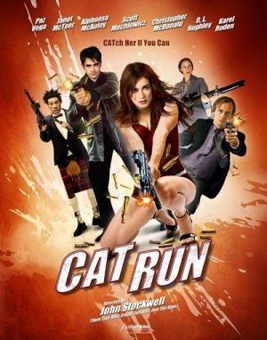 Cat Run 400x509