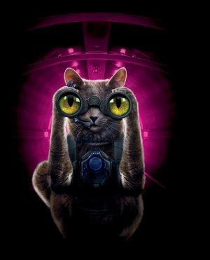 Cats & Dogs - Die Rache der Kitty Kahlohr 1213x1500