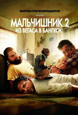 The Hangover Part II 3415x5000