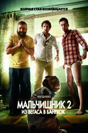 The Hangover Part II 3333x5000