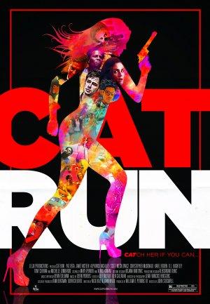 Cat Run 3462x5000
